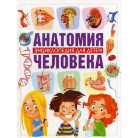 Книга Анатомия человека. Энциклопедия для детей Гуиди В.