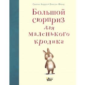 Книга Большой сюрприз для маленького кролика Хэддоу С. Френд Э.