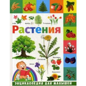 Книга Растения: энциклопедия для малышей Гриценко Елена Николаевна