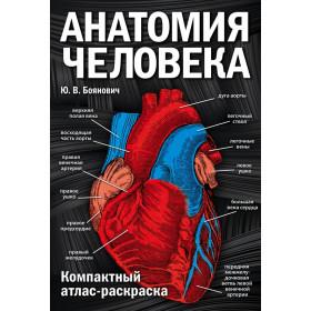 Ю. В. Боянович. Анатомия человека: компактный атлас-раскраска
